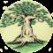 drzewo-qigong
